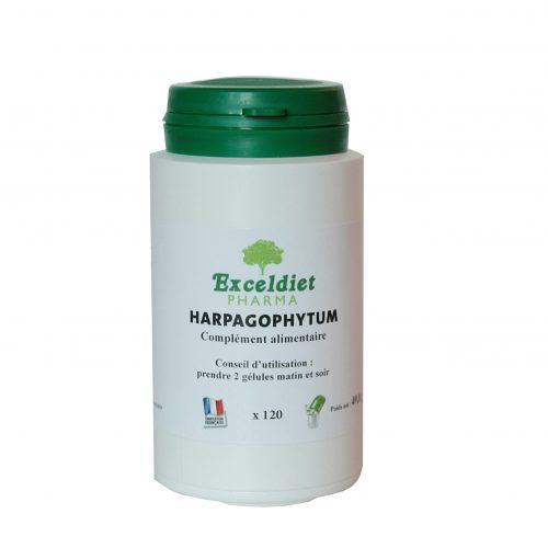 Harpagophytum- Favorise une Bonne Mobilité, Souplesse Articulaire  exceldiet