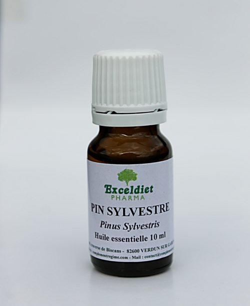 Huile essentielle de pin sylvestre pour soulager les bronches